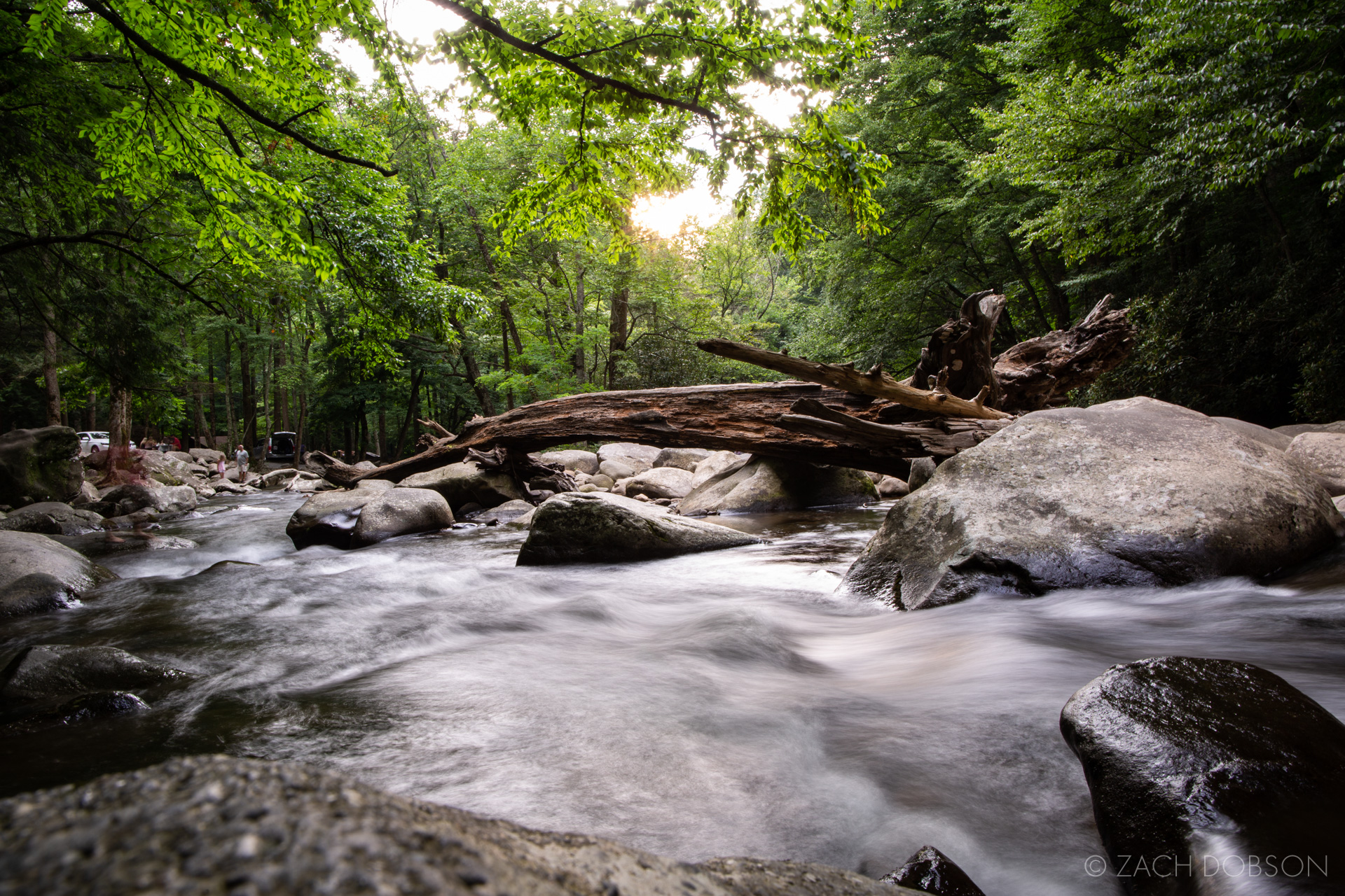 Great Smoky Mountains river