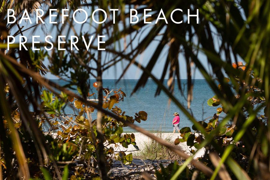 barefoot beach preserve bonita springs florida