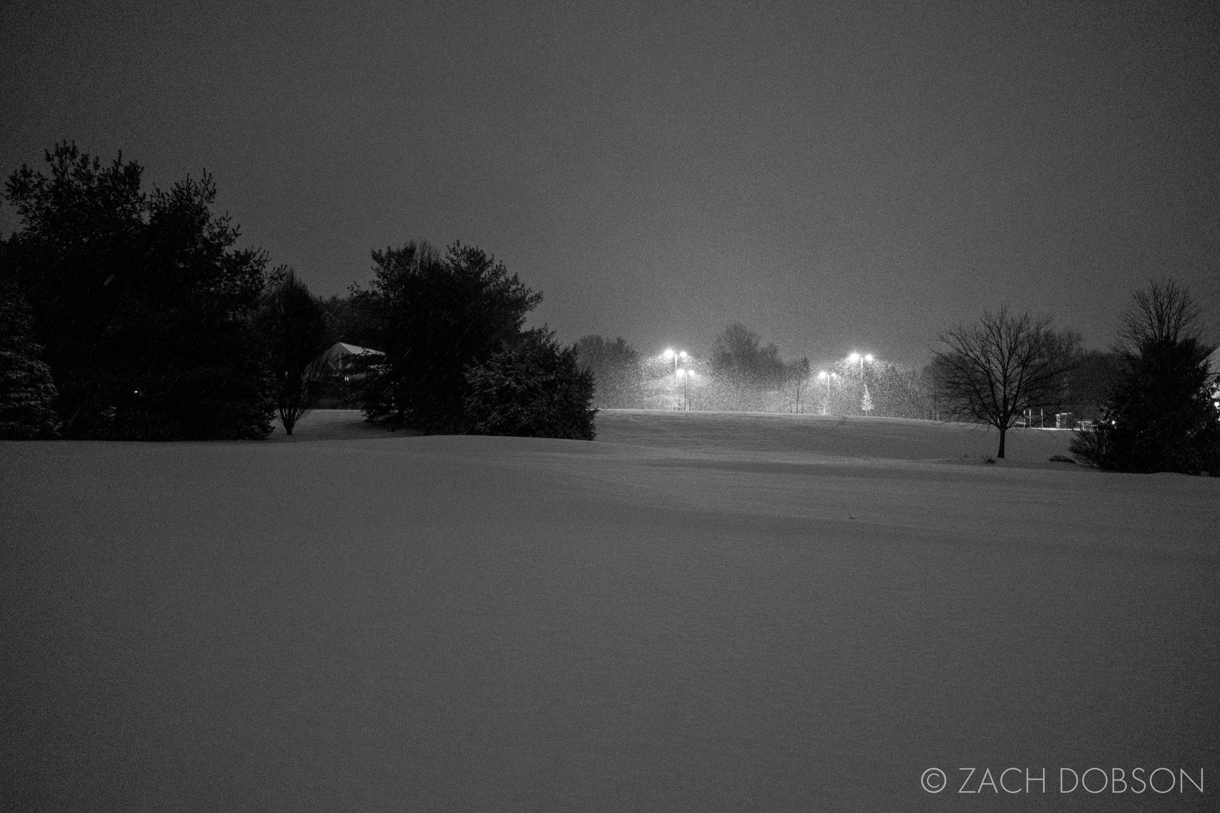 Moody Photos of Night Snow